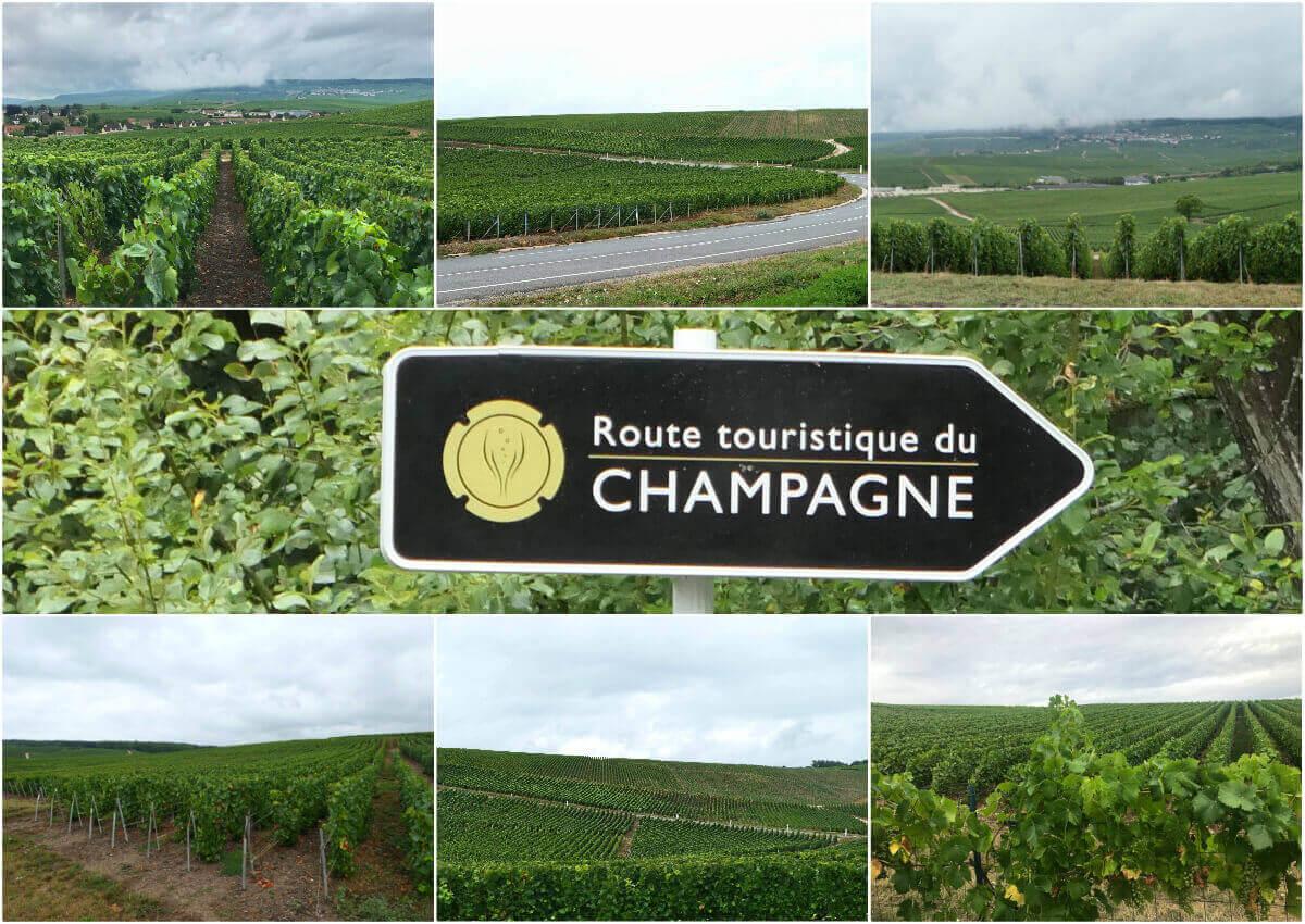 Champagne Route, Route touristique du Champagne, France