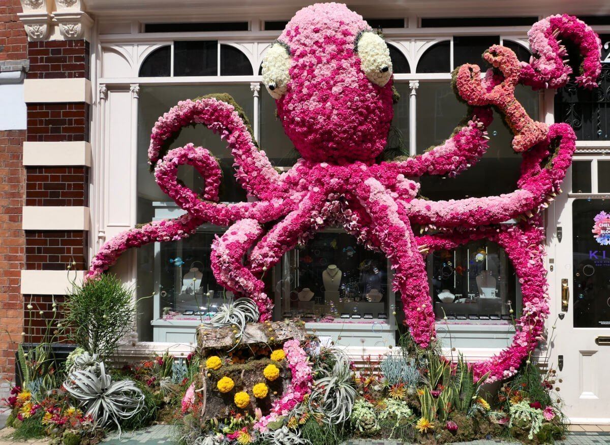 Kiki Mcdonough, Chelsea in Bloom, London, England