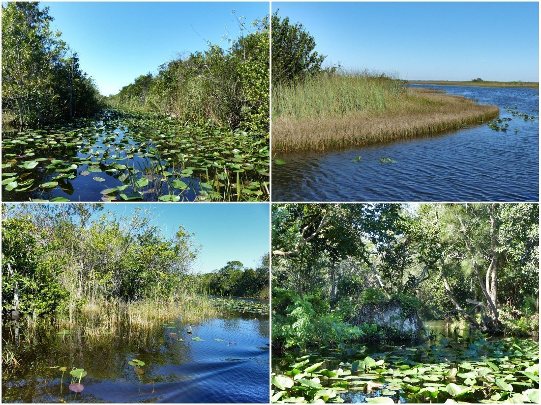 Everglades National Park, Florida, United States