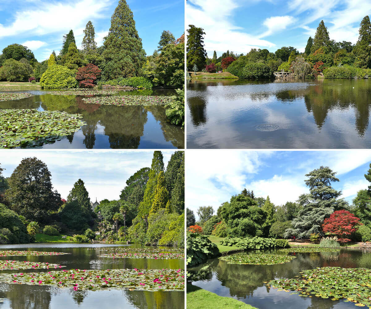 Summer Sheffield Park and Garden, England 1