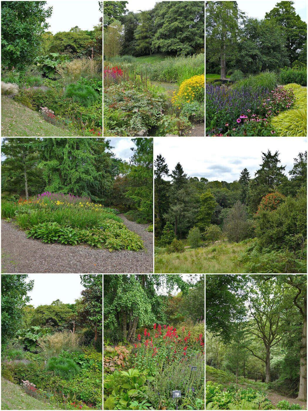 Wakehurst Wild Gardens